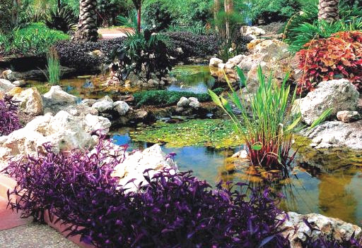 Heritage House And Botanical Gardens In Largo Fl