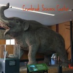 Fun with Science at Cranbrook Science Center