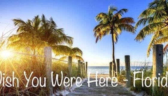 Wish You Were Here 1