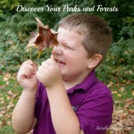 Discover Your Parks and Forests