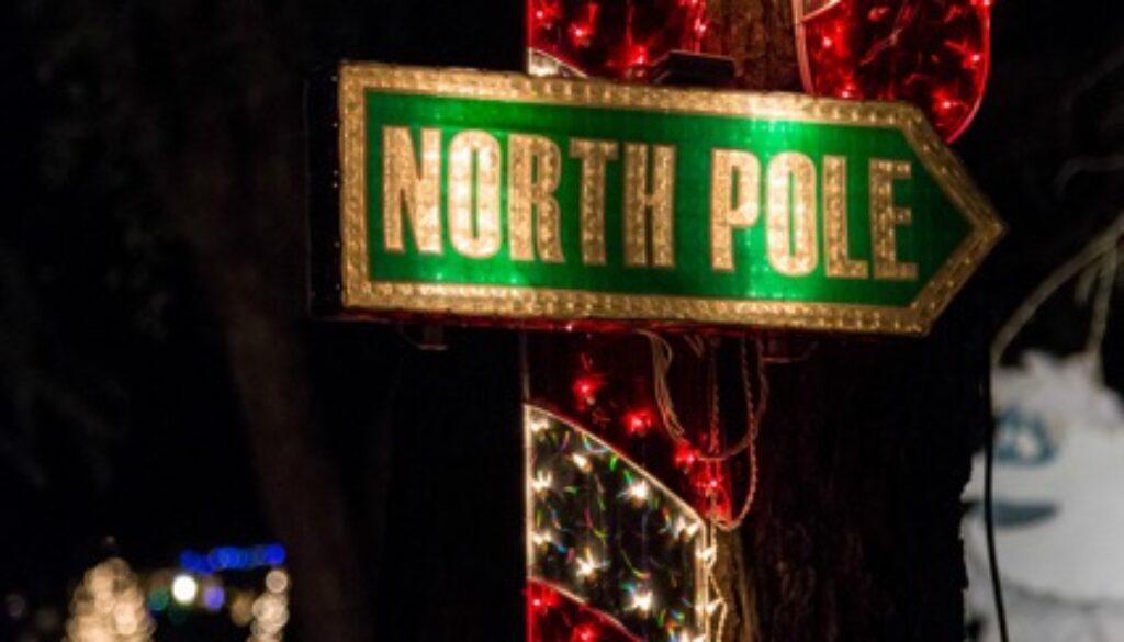 Christmas Tree Lane 4