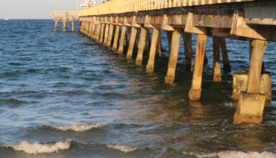12 Signs you are in LBTS Anglins Fishing Pier