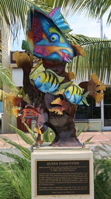 10 Signs you are in LBTS Parrot Fish Plaza