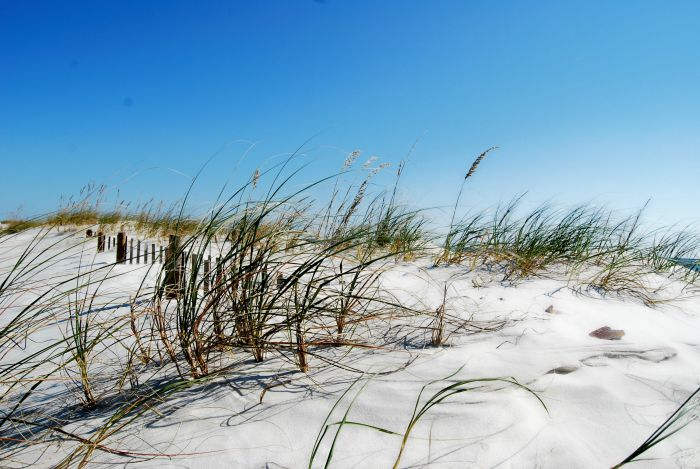 Alabama beaches white sand