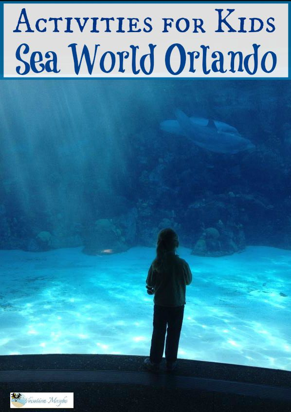 Great activities for kids at Sea World Orlando