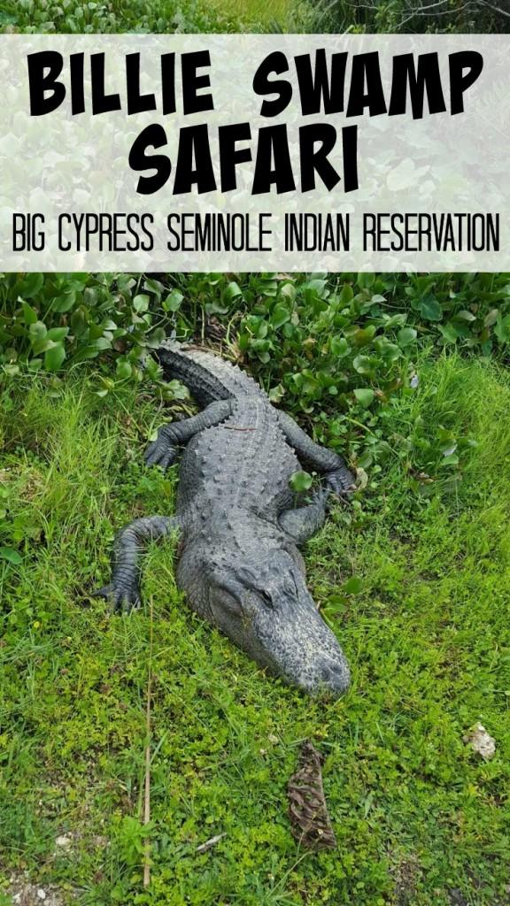 Billie Swamp Safari on the Big Cypress Seminole Indian Reservation