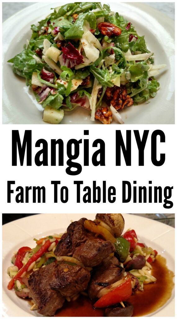 You are what you mangia. Enjoy farm to table fresh food in New York City at Mangia. From fresh fruit juices to salads, sandwiches, and gourmet daily chef specals you will find heaven on a fork at Mangia