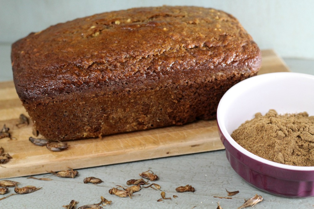 Banana Nut Bug Bread is made with cricket flour and is how I started eating bugs