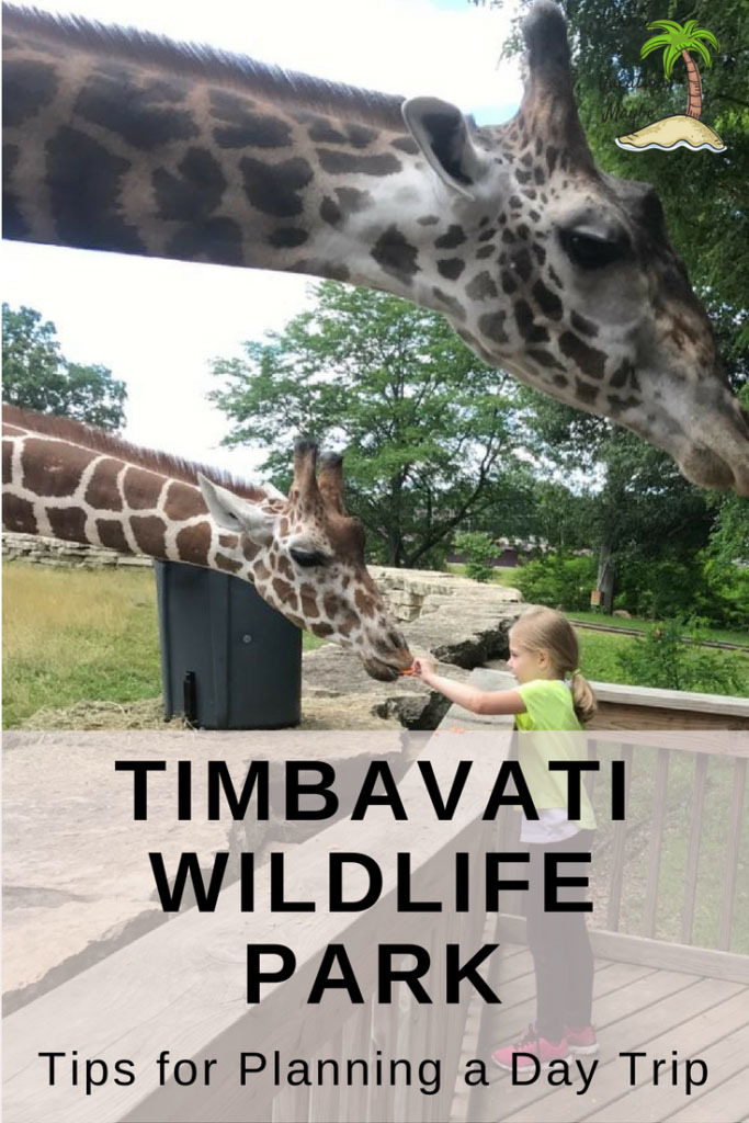 Visit Timbavati Wildlife Park in Wisconsin Dells for a fun filled animal adventure!  Check out our tips for making your visit easy to manage with children!