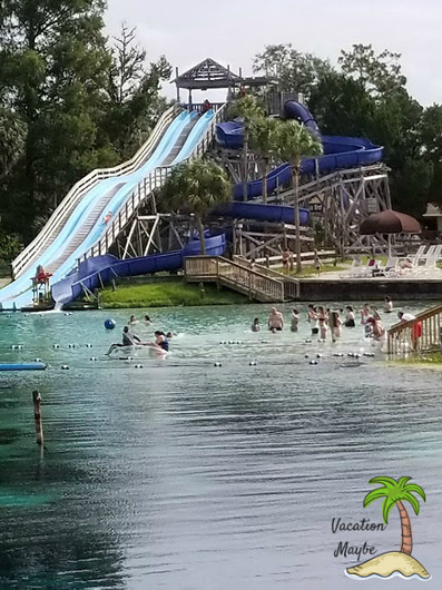 Find a Real Mermaid when you visit Weeki Wachee Springs State Park in Florida! A great family friendly destination with fun in the water for the family!