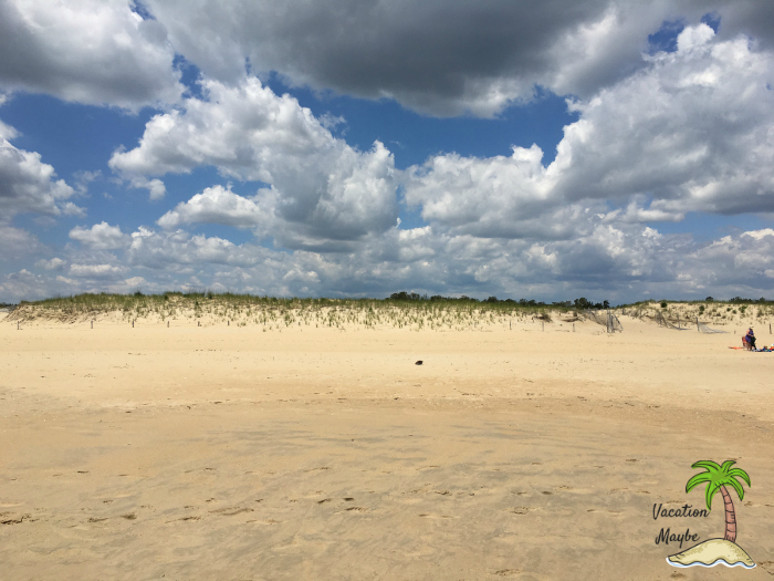 Check out the Dunes at Cape Henlopen and all the attractions at Delaware beaches.